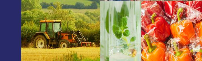Guia de la propietat intel·lectual del sector agroalimentari per a pimes.